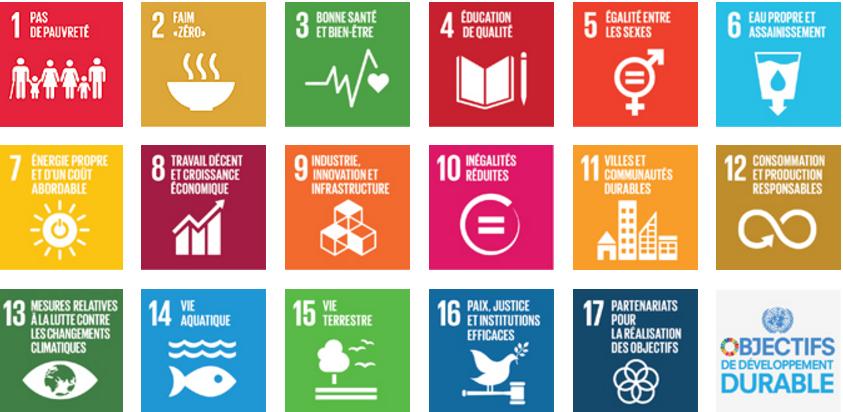 Le Programme de développement durable à l'horizon 2030 comprend 17 objectifs de développement durable